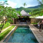 Villa 41 pool
