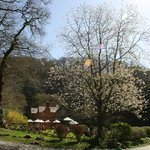 Sunny spring day at Watersmeet