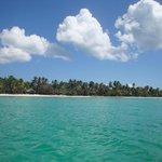 View from the catamaran of Saona Island