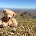 Smallwood's mascot at the top of Helvellyn!