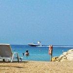 playa sol y palmeras