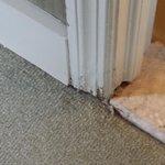 water damages around bathroom door