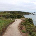 Cape Foulwind Lighthouse walk