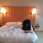kingside bed middle room west wing