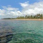 piscina de corais
