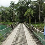 Bridge onto the Island