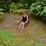 Letting the doctor fish feed on me in the butterfly park