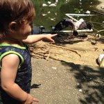 He really loves birds.
