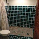 The very spacious shower. Shower head works like a firehose.