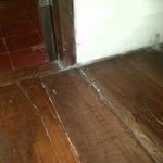 sarang rayap di lantai kamar