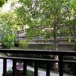 The pool villa view