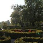 Veranda gardens
