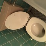 stained_toilet