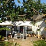 Outdoor Breakfast Area/Reception