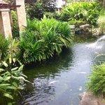 Японский садик:)