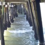 Beneath the San Clemente Pier