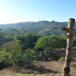 Aussicht - in die Landschaft und zur Beobachtung von Dukanen, Papageien, Kolibris + Schmetterlin