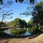 Natur-Teich - daneben gibt es aber auch noch einen schönen Pool
