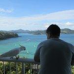 Overlooking Whitsunday Passage
