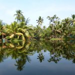 peaceful backwaters