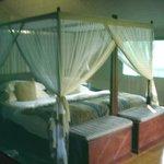 Luxury Tented Suite - Bedroom (taken through mesh window)