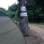 Vårat tält