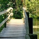 River Itchen walks