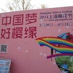 2014 Shanghai Cherry Festival