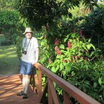 Gardens of LaTerraza Guest House