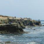 Point Loma sea cliff