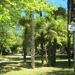 Verso le Grotte: il parco Maria Callas