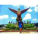 Eagle square ;)