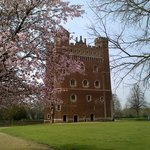 Blossom time at Tattershall Castle