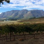 View from the outdoor seating area towards Stellenbosch Mountain