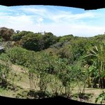 Panoramic view from room