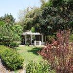 Garden & rotunda