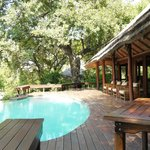 infinity pool common lodge area