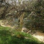 la ballade le long du Doubs