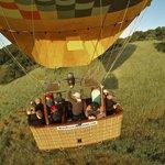 Napa Valley Balloons Inc.
