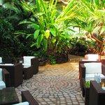 Botanical garden in hotel