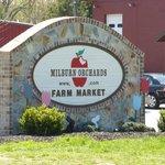 Milburn Orchard Sign at Easter