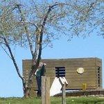 Milburn Orchard Wooden Truck & Slide