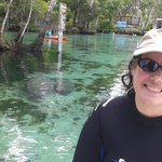 Jenn and some Manatees