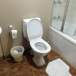 Toilet. Basic