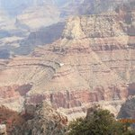 All-Star Grand Canyon Tours Photo