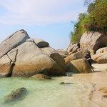 Rocks on Turtle beach