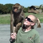 Capuchin Monkey and Courtney