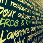 The story of Frog & Kiwi