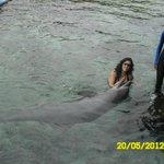 Delfinario Islas del Eosario