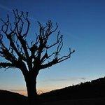 Blaue Stunde im I Veroni